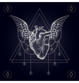 Heart with wings boho vector image vector image