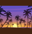 Palm coconut trees Silhouette at sunset or sunrise vector image