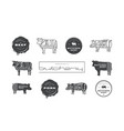 pork beef cuts diagrams labels and stamps vector image vector image