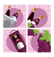set of wine collection vector image vector image