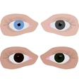 four different colour eyes vector image