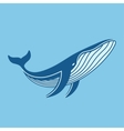 Blue whale icon vector image