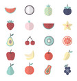 Fruit Healthy Food Set Of Nature Icon Style vector image vector image