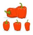 Orange bell peppersweet pepper or capsicum vector image vector image