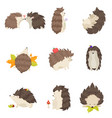 set of cute hedgehogs in different poses and vector image vector image