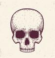 human skull hand drawn vector image vector image