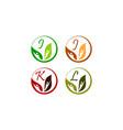 leaf health nutrition initial i j k l vector image vector image