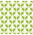 seamless decorative floral pattern with clover vector image vector image