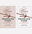 set two wine labels with grapevine vector image