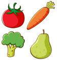 set vegetables on white background vector image