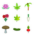 blossom icons set cartoon style vector image vector image