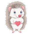 cute hedgehog character vector image