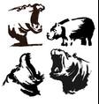 hypopotamus vector image vector image