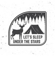 let s sleep under stars summer camp vector image