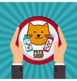 Pet shop with cat design vector image