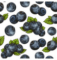 seamless blueberry pattern vector image vector image