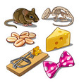 the set of objects on the subject of catching mice vector image