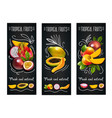 tropical fruits chalkboard label set vector image vector image