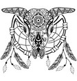 bull scull with dream catcher vector image