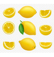 lemons collection realistic picture citrus vector image