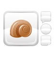 Sea beach and travel icon with snail on square vector image