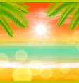 sea sunset with palmtree leaves and light on lens vector image vector image