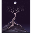 Landscape with tree in the night vector image