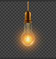 light bulb hanging decorative light bulb vector image vector image