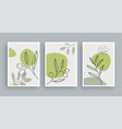 olive branch botanical wall art painting