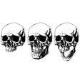 Scary graphic human skull with black eyes set vector image vector image