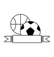basketball and football balls vector image