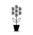 bitcoin flower in the pot black silhouet vector image