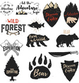 Expedition discover adventure labels and emblems vector image