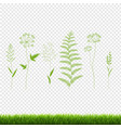 green grass set isolated transparent background vector image vector image
