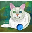 Khao Manee Cat vector image vector image