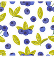 seamless pattern of blueberry vector image