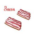 sketch bacon fresh butchery meat icon vector image vector image