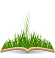 Spring with grass in the book vector image vector image