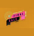 trendy special offer final sale banner template vector image vector image