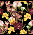 yellow brown bordo orchid flowers pattern vector image vector image