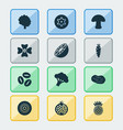 fruit icons set with potato dad clover and other vector image