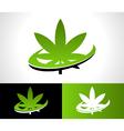Swoosh Cannabis Logo Icon vector image