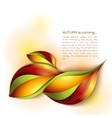 Autumn abstract background Orange leaves vector image vector image