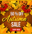 autumn sale poster fall season discount price vector image vector image