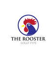 chicken logo designs vector image