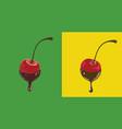 chocolate cherries vector image vector image