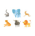 cute african animals set raccoon elephant vector image vector image