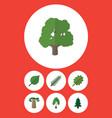 flat icon nature set of alder linden baobab and vector image vector image