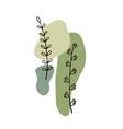 modern plant elements background vector image