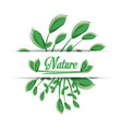 natural banches with leaves plants vector image vector image